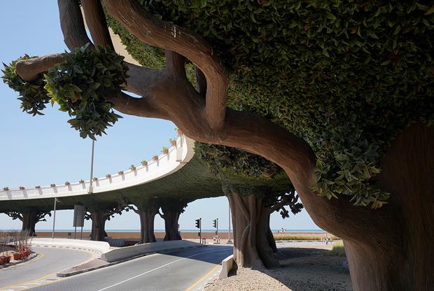 Марио Дель Курто проехал весь мир, чтобы изучить отношения человека с природой. Он посетил древние яблоневые леса Казахстана, находящиеся на грани исчезновения, старинный итальянский «Парк монстров» и другие уникальные сады в разных точках планеты, дикие и прирученные. Они могут сказать о многом, считает фотограф, отыскавший в них сильные символические образы.