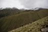 По мере того как среднегодовые температуры в горах западного Китая становятся все выше, запасы кордицепса истощаются, и искателям приходится уходить все дальше и подниматься все выше, чтобы найти достаточное количество грибов. Ледники уходят, а вместе с ними исчезают грибы.