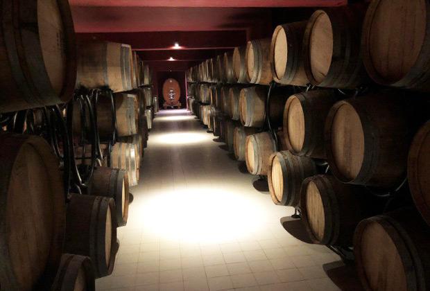 В отличие от Грузии, где производят вино практически только из автохтонных сортов, в Азербайджане значительная часть качественного вина создается из европейских сортов.