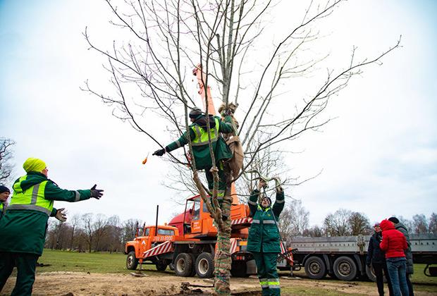 Рабочие благоустраивают парк в Риге