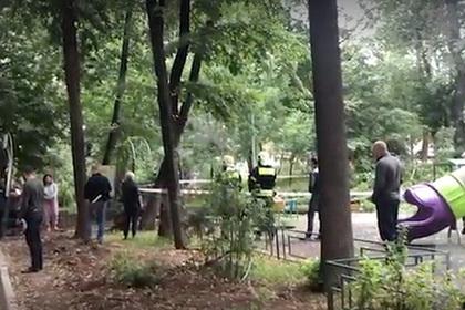 Упавшее дерево убило мальчика в Москве