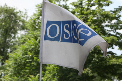 ОБСЕ поддержала антироссийскую резолюцию по Крыму: Политика: Мир: Lenta.ru