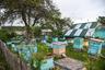 Собственная пасека в ЛИУ-19, где трудятся сами заключенные. На пасеке 50 ульев, произведенный в колонии мед идет и в столовые колоний всей Мордовии, и на продажу населению республики.