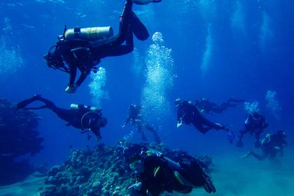 В сети рассказали о самых пугающих находках под водой