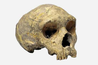Раскрыто происхождение загадочных древних людей