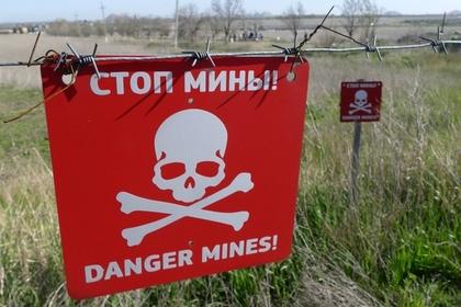 """Табличка с надписью """"Стоп мины!"""" в районе поселка Александровка в Донецкой области"""