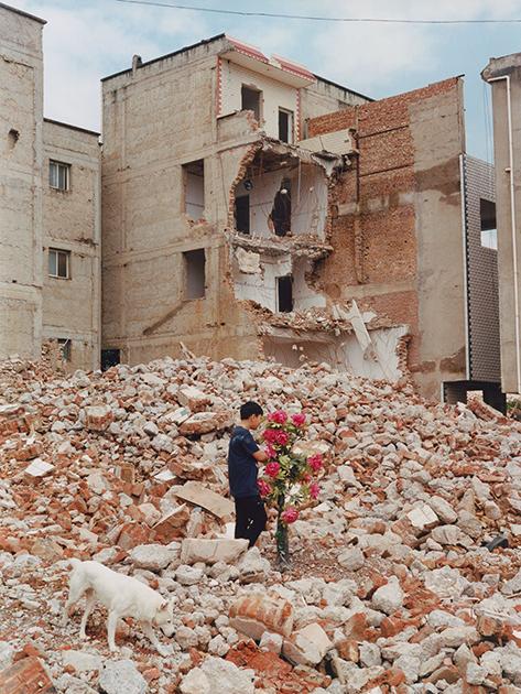 Строительная компания сносит дома в деревне близ города Куньмин на юге Китая для постройки новых зданий. Мальчик с искусственными цветами, гуляющий по руинам, по словам фотографа, является метафорой надежды.