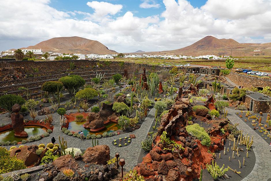 Парк кактусов, разбитый по инициативе Сезара Манрике в селении Гуатиза