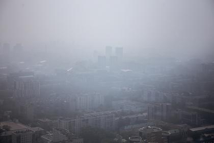 Названо условие появления в Москве дыма от сибирских лесных пожаров