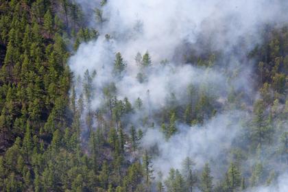 Дым отгорящих российских лесов дошел доМонголии