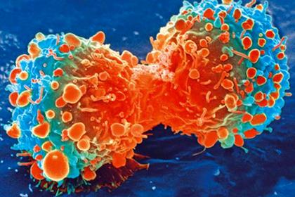 Найден способ победить особо опасные типы рака