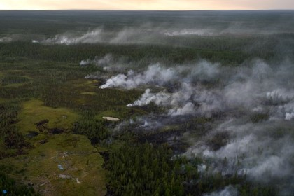 Подсчитан ущерб от лесных пожаров в России