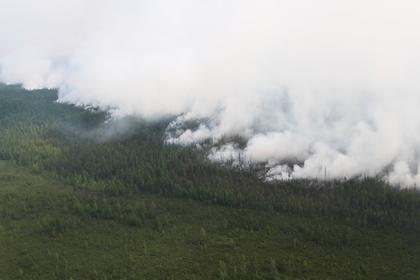 Италия обеспокоилась пожарами в Сибири