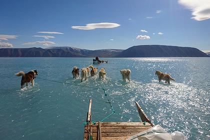 В Гренландии зафиксировали катастрофическое таяние льда