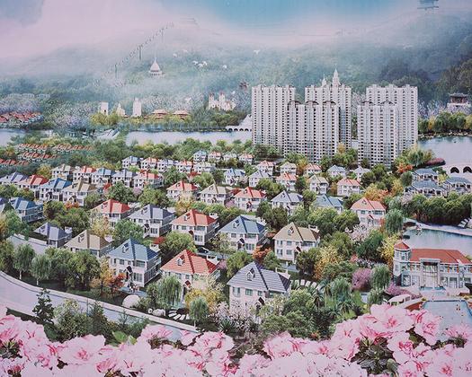 Вошедшая в финал конкурса серия работ китайского фотографа посвящена образу Китая. Серия «Ретротопия» показывает деревню Хуаси на востоке страны. Ранее одно из множества бедных поселений, в настоящее время считается самым богатым в Китае. Хотя бы потому, что Хуаси — единственная в мире деревня, имеющая небоскреб. Многие местные жители миллионеры.