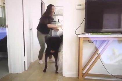 Блогерша сильно ударила собаку и заставила фанатов отвернуться от нее photo