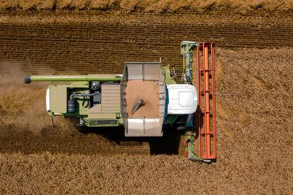 Российский регион нарастит экспорт зерна в полтора раза