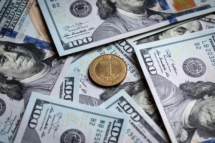 Зеленского попросили сделать доллар национальной валютой Украины