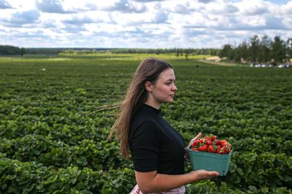 Россия накормит всех своими органическими продуктами. Это принесет стране миллиарды