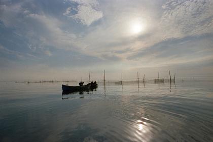 В Белом море ограничили лов рыбы