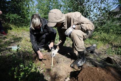 Ученые изучат воздействие промышленных отходов на экологию Норильска