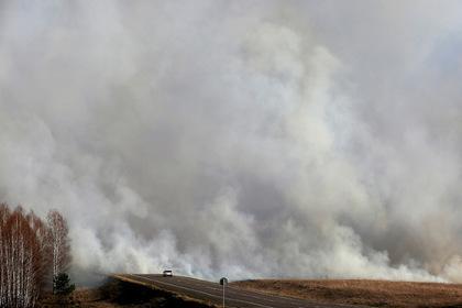 Экологи уличили чиновников в занижении данных о пожарах в Сибири