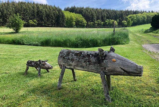 Почти все деревеньки в окрестностях Нюрбурга удивительно живописные, а местная природа — настоящая сказка. Зеленые луга, густые леса и чистейшие ручьи.