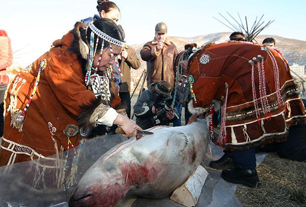 Корякские женщины разделывают тюленя в ходе шаманского ритуала