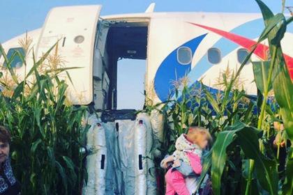 Пассажиры аварийно севшего самолета отказались лететь в Крым