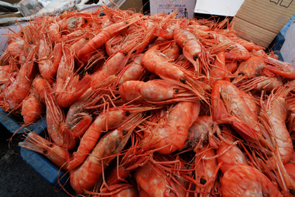 Вслед за рыбой северян обеспечат дешевыми креветками