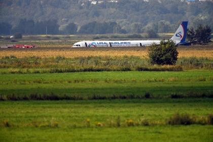 Отказавшийся считать себя героем пилот уцелевшего Airbus вернулся домой