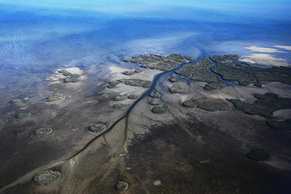 За экологические преступление на Каспии захотели наказывать строже