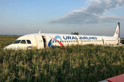 Восстановлена хронология посадки Airbus в кукурузном поле
