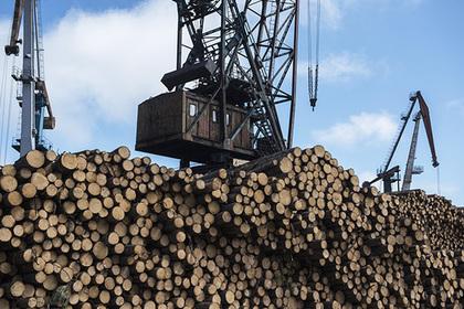 Индия отберет российский лес у Китая