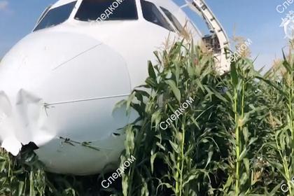 Стало известно о расшифровке черных ящиков севшего на поле Airbus