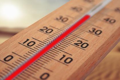 Придуман необычный способ борьбы с жарой