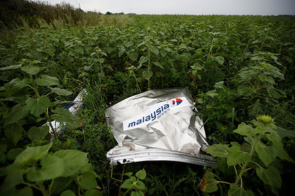 Суд по делу сбитого «Боинга» MH17 призвали перенести