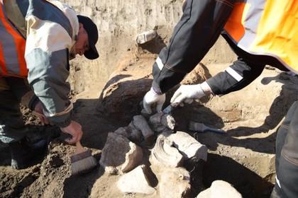 Уникальный древний саркофаг обнаружили в Крыму