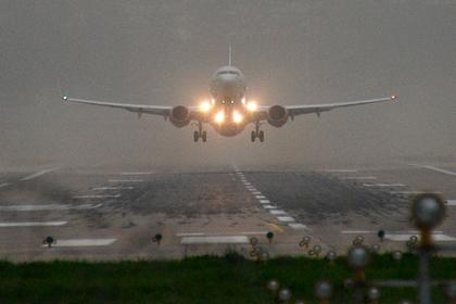 В России признали невозможность полностью защитить самолеты от птиц