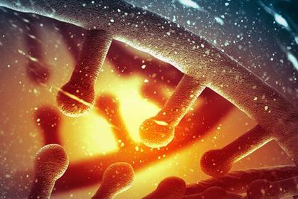 Ученые приблизились к созданию живых «фабрик»-мутантов