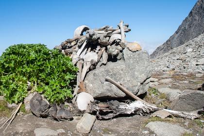Раскрыта тайна Озера Скелетов в Гималаях