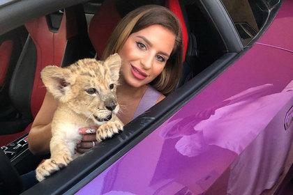Блогерша позволила львенку поиграть в Lamborghini и пожалела