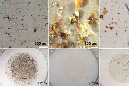 В снегах Арктики найдено огромное количество микропластика