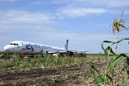 Появилось видео уничтожения севшего на кукурузное поле самолета A321