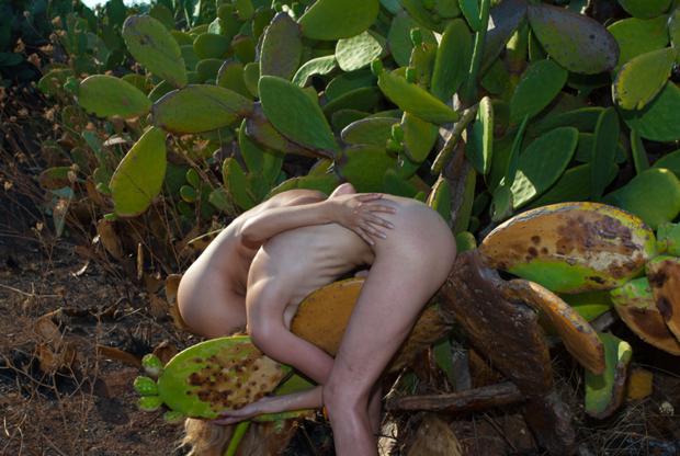 AnaHell ведет совместный проект с Натали Дрейер с 2011 года. Создание фотографий, на которых они изображены вместе, стало ритуалом для каждой из их встреч. Этот снимок сделан в Италии, и, по признанию одной из участниц, близкое знакомство с кактусами оказалось довольно болезненным.