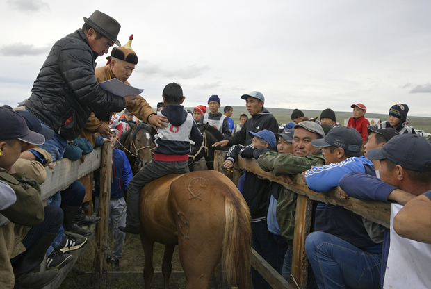 Наездник, не прошедший отбор на скачки. На них допускаются лошади четырех лет и старше. Возраст коня определяют по зубам.