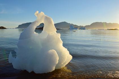 Пожары в Сибири спровоцировали таяние льдов в Арктике
