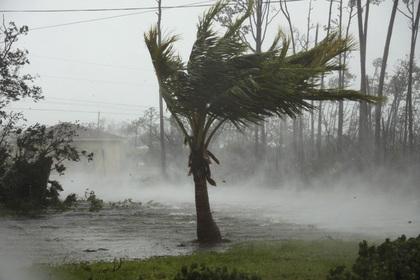 Жертвами урагана «Дориан» стали пять человек