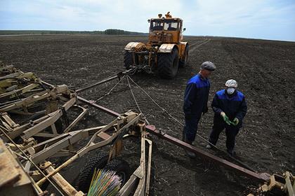 В Башкирии фермеры получат поддержку на десятки миллионов рублей