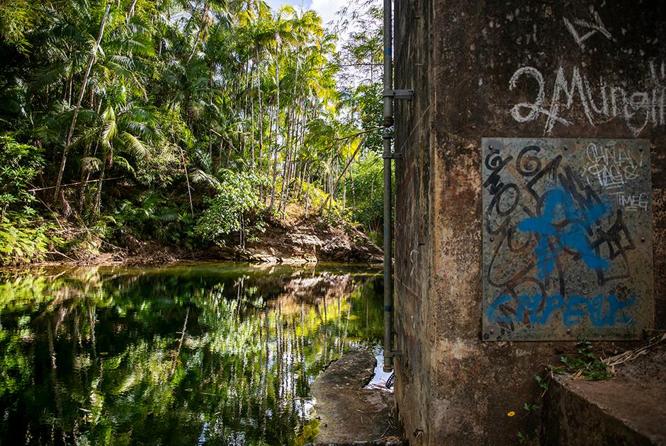 Водоем возле реки Лонфит, в котором жертвы подвергались сексуальному насилию